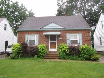 25550 Shoreview Ave, Euclid, OH 44132 - MLS#: 3935067