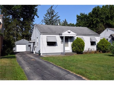 3924 Risher Rd, Youngstown, OH 44511 - MLS#: 3935275