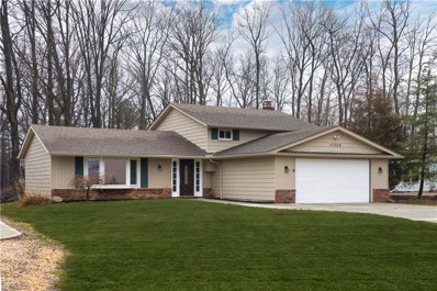 17024 Hunting Meadows Dr, Strongsville, OH 44136 - MLS#: 3935355