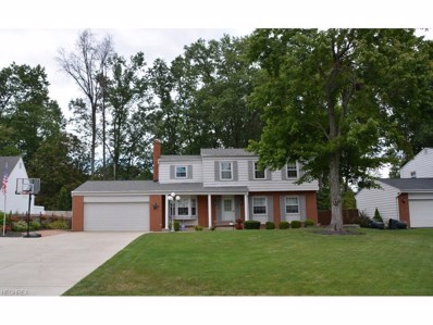 4065 Longhill Dr SOUTHEAST, Howland, OH 44484 - MLS#: 3935599