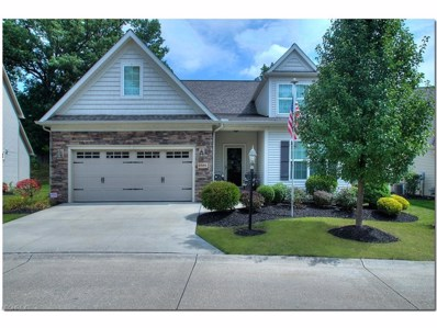 8581 Alexis Dr, Macedonia, OH 44056 - MLS#: 3936250