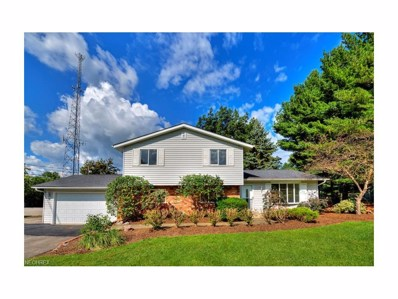 11542 Chillicothe, Chesterland, OH 44026 - MLS#: 3937025