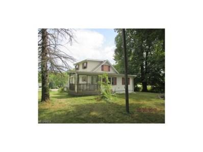 8936 S Salem Warren Rd, Canfield, OH 44406 - MLS#: 3937120