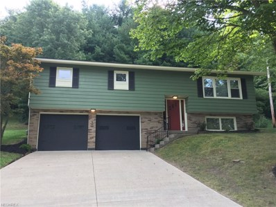 894 Green Dr, Coshocton, OH 43812 - MLS#: 3937185