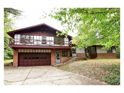 295 River Rd, Hinckley, OH 44233 - MLS#: 3937621