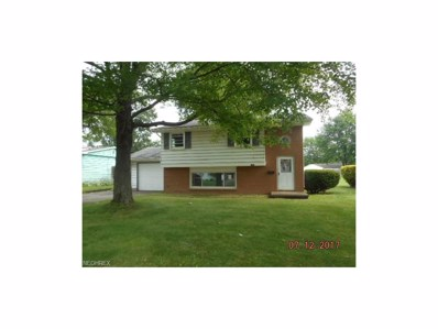 1769 Basil Ave, Youngstown, OH 44514 - MLS#: 3937717