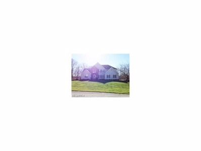 49511 Woodland Dr, East Liverpool, OH 43920 - MLS#: 3938181