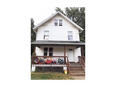 768 Kling St, Akron, OH 44311 - MLS#: 3938293