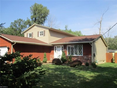 419 Buckeye Dr, Sheffield Lake, OH 44054 - MLS#: 3938965