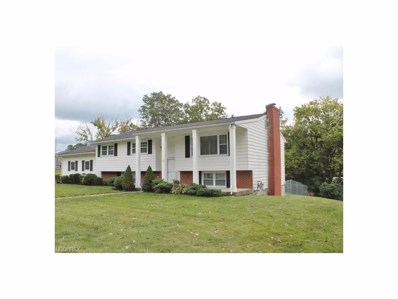 518 Wooster Rd, Mount Vernon, OH 43050 - MLS#: 3939206