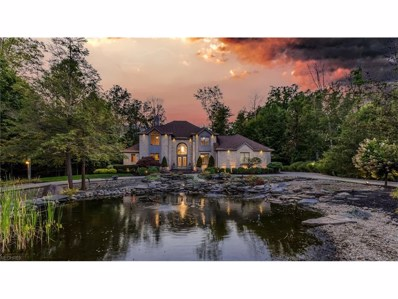 5792 Canyon Ridge Dr, Perry, OH 44077 - MLS#: 3939331