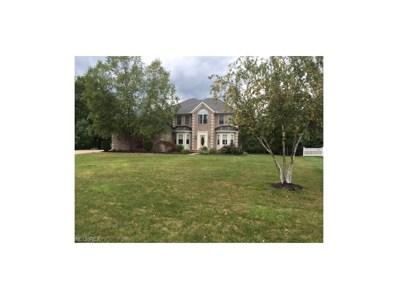 6980 Silkwood Ln, Solon, OH 44139 - MLS#: 3939381