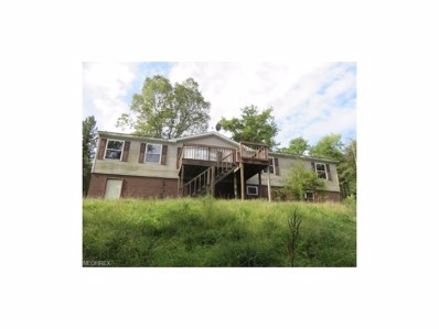 17658 State Route 152, Toronto, OH 43964 - MLS#: 3939483
