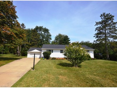24486 Nobottom, Olmsted Township, OH 44138 - MLS#: 3939559