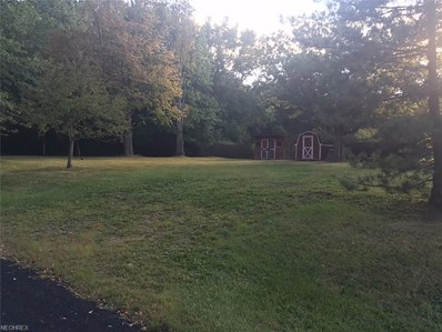 4248 Tapper, Norton, OH 44203 - MLS#: 3939638