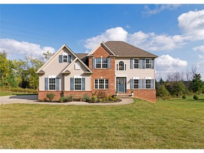 7533 Maplewood Dr, Solon, OH 44139 - MLS#: 3939769