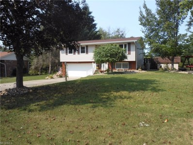 12234 Milly Dr, Doylestown, OH 44230 - MLS#: 3939867