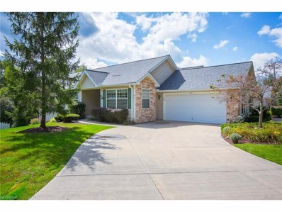 901 Grand View Ln, Aurora, OH 44202 - MLS#: 3939945