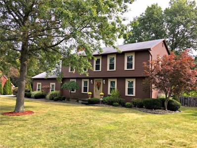 431 Chatsworth Ln, Canfield, OH 44406 - MLS#: 3940144