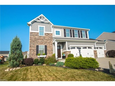 2895 Coldwater Ave NORTHWEST, Canton, OH 44708 - MLS#: 3940193