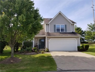 3918 Reeves Ln, Medina, OH 44256 - MLS#: 3940408