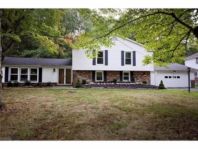 473 Somerset Dr, Chagrin Falls, OH 44022 - MLS#: 3940548