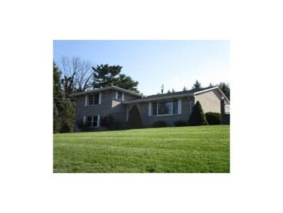 435 Morningside Dr, Wintersville, OH 43953 - MLS#: 3940643