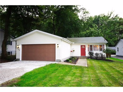 6564 Fairgrounds, Concord, OH 44077 - MLS#: 3940715