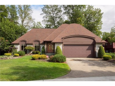 1043 Brook Ln, Rocky River, OH 44116 - MLS#: 3941324