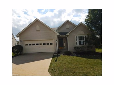 574 Shallow Creek Cir, Northfield, OH 44067 - MLS#: 3941413