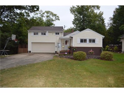 5021 Simon Rd, Youngstown, OH 44512 - MLS#: 3941429