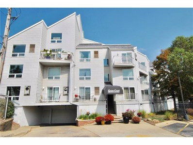 1900 Grove Ct UNIT 313, Cleveland, OH 44113 - MLS#: 3941456