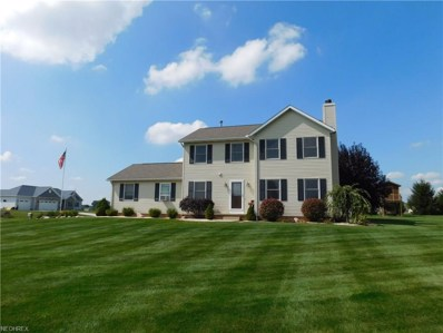 755 Flag Stone Ave, Wooster, OH 44691 - MLS#: 3941767