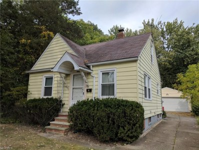10917 Mountview Ave, Garfield Heights, OH 44125 - MLS#: 3941776