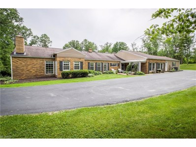 6105 State Route 183 NORTHEAST, Magnolia, OH 44643 - MLS#: 3942677