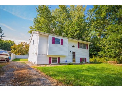 324 Washington Ave, Newton Falls, OH 44444 - MLS#: 3942813