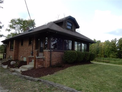 5294 Windfall Rd, Medina, OH 44256 - MLS#: 3943044