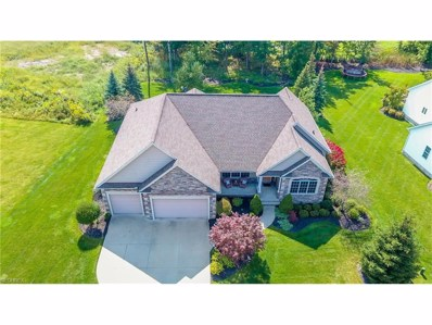 10935 Quail Hollow Dr, Concord, OH 44077 - MLS#: 3943122