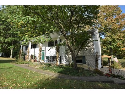 6644 Leffingwell Rd, Canfield, OH 44406 - MLS#: 3943290