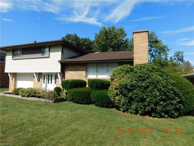 411 Linduff Ave, Steubenville, OH 43952 - MLS#: 3943305