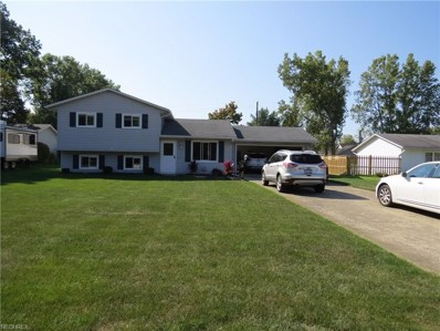 355 Deepwood Ln, Amherst, OH 44001 - MLS#: 3943344