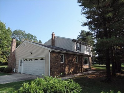 8002 Mulberry Rd, Chesterland, OH 44026 - MLS#: 3943893