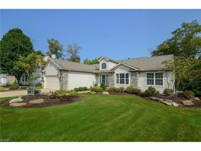 10298 Andover Dr, Twinsburg, OH 44087 - MLS#: 3944101