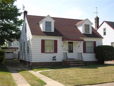 13113 Terminal Ave, Cleveland, OH 44135 - MLS#: 3944659