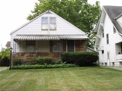 551 Detroit Ave, Youngstown, OH 44502 - MLS#: 3945116