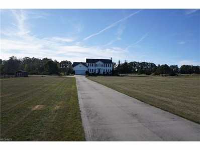 4179 Porter Rd, Rootstown, OH 44272 - MLS#: 3945283