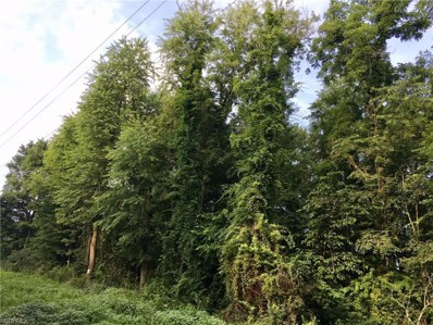 Plum, Newcomerstown, OH 43832 - MLS#: 3945669