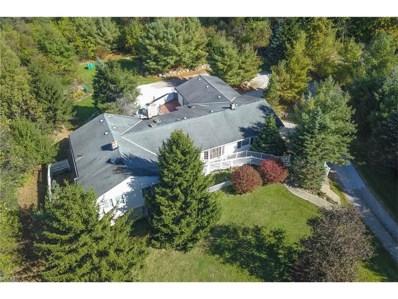 8380 Kinsman Rd, Novelty, OH 44072 - MLS#: 3945755