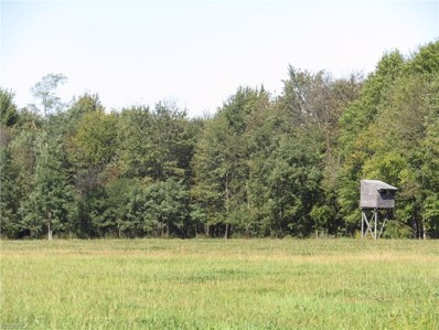 1743 Us Route 322, Orwell, OH 44076 - MLS#: 3945801