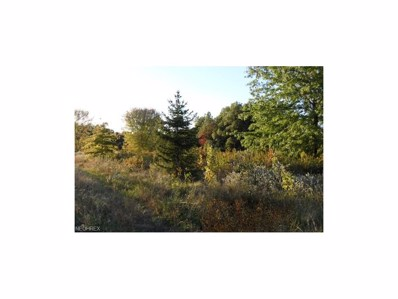 1897 Porter, Atwater, OH 44201 - MLS#: 3945882